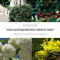 2021 06 23 krzw 1